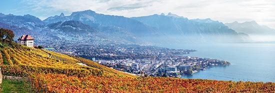s'expatrier en Suisse expatrié