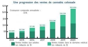 graphique progression ventes cannabis