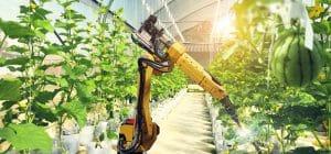 automatisation robotique agriculture industrie robots
